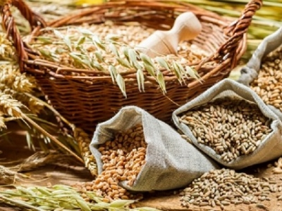 The seminar  «Exports of flour and cereals production in the EU: from theory to practice»
